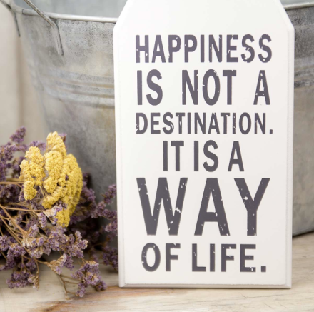 mrwonderfulshop_happiness_is_not_a_destination_02