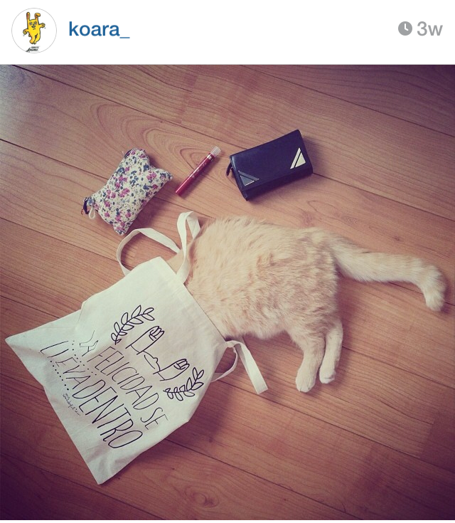 mrwonderful_concurso_instagram_026