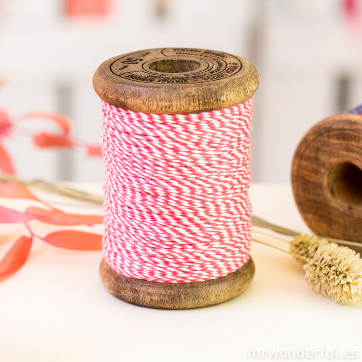 mrwonderful_AN9915_bakers-twine_blanco-rojo-bobina-antigua-2