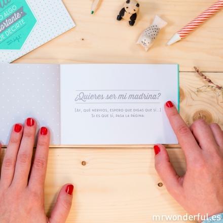 Mr.Wonderful libro madrina